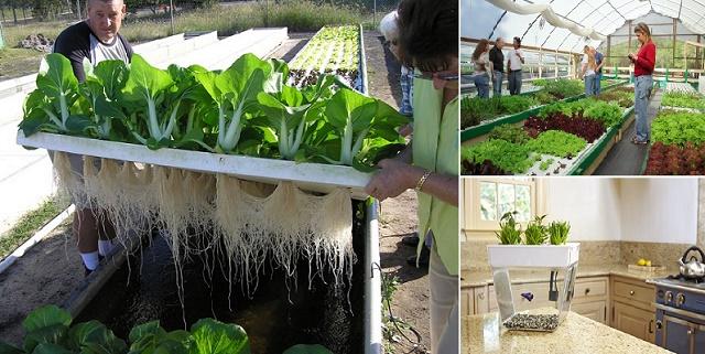 Des Superbes Id 233 Es De D 233 Coration Pour Votre Jardin Avec