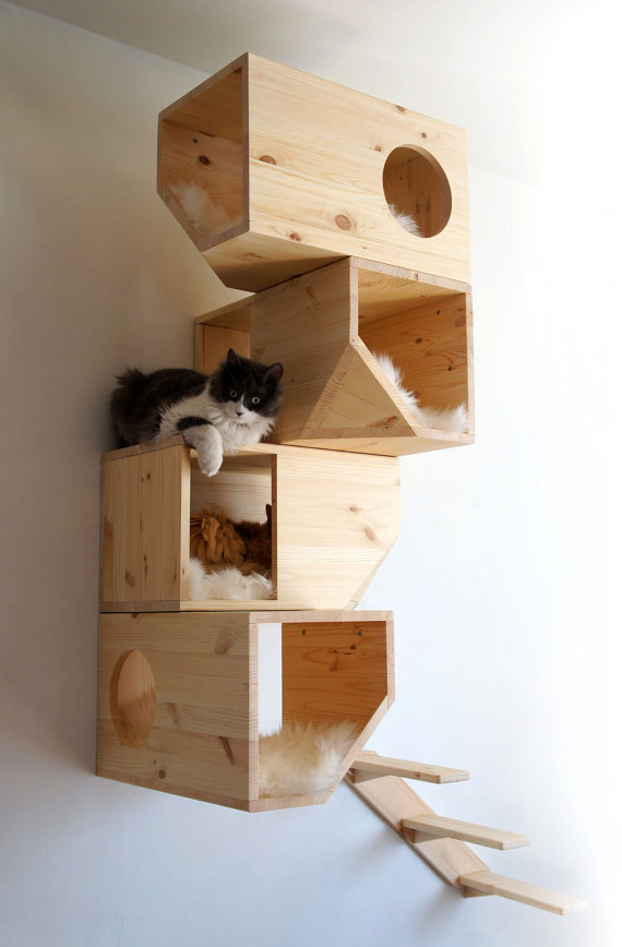 cool-ideas-for-cat-lovers-fresh-fidly-1