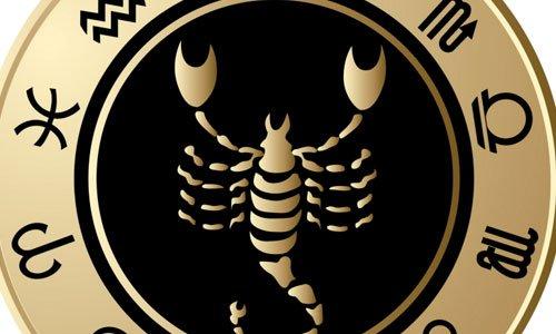 rencontre avec un scorpion