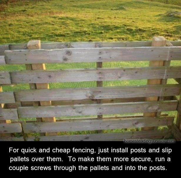 reuse-wooden-pallets-59