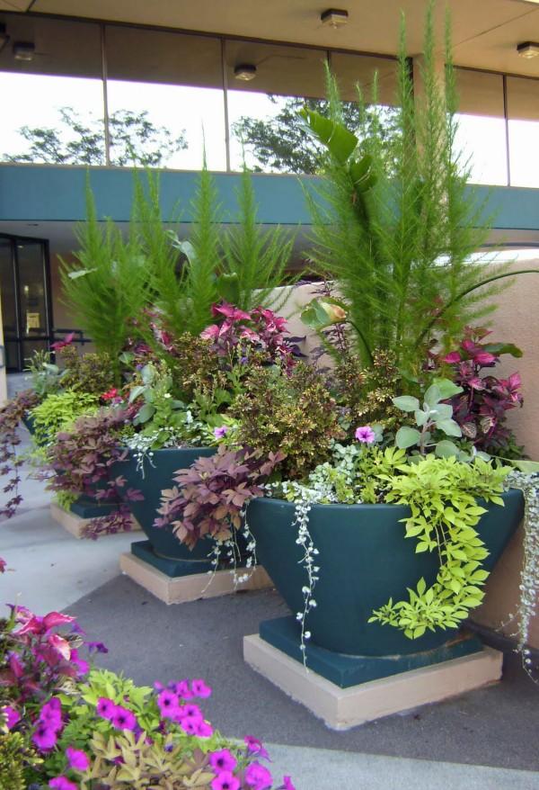 garden-design-ideas-fresh-fidly-11