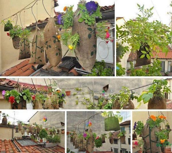 gardening-ideas-23