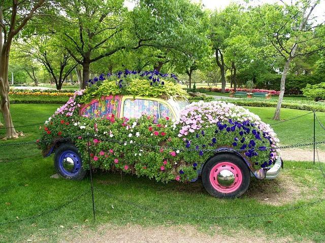 gardening-ideas-27