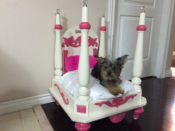 royal-pet-bed-from-old-table-dip-feed-4