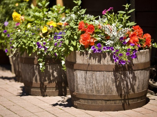 iStock-3777830_barrels-in-garden-with-flowers_s4x3-535x401