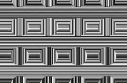 16 circles optical illusion 1 598c18d36051b  880