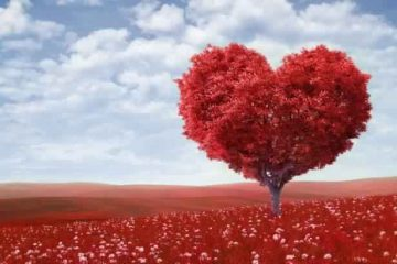 Belief realities about love