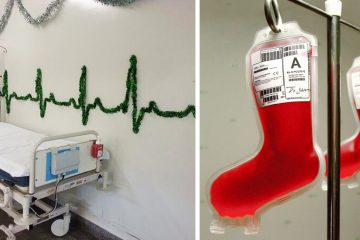 hospital christmas decorations fb2