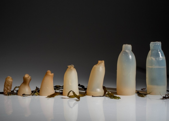19321860 algae water bottle by ari jonsson designmarch dezeen ban 936x669 1517482651 650 bd19c7430a 1517607813
