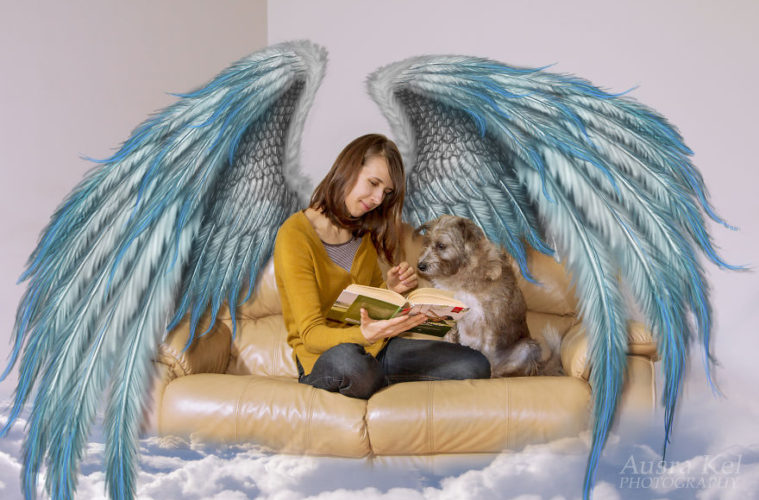 I took dogs from shelter and created another world for them 5a60c331997cd 880