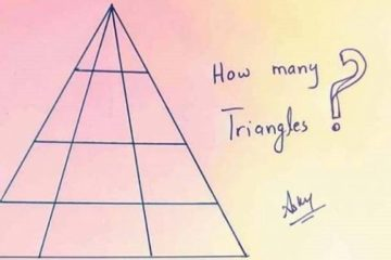 triangles 768x384