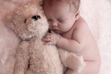 teddybear baby