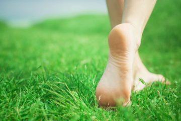 barefooting evid ok e1469204479115