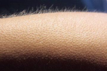 Les gens qui ont des frissons a lecoute de la musique pourraient avoir un cerveau special
