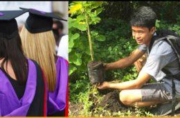 Plant 1 tree