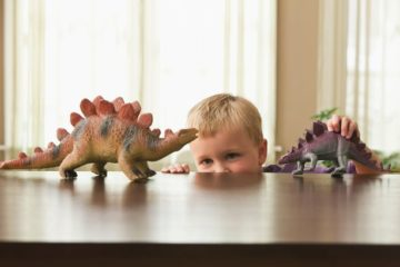 0 Caucasian boy playing with toy dinosaurs