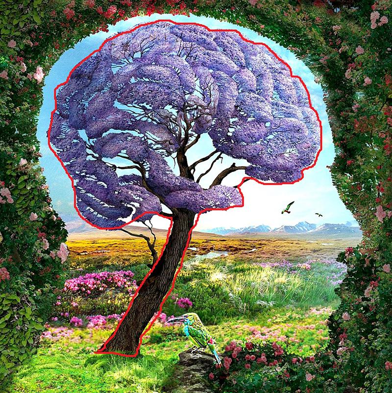 Brain and Tree