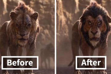 lion king live action fan remake nikolay mochkin fb43 png 700