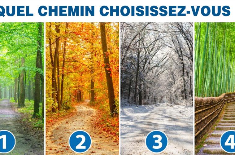 Quel chemin choisissez vous