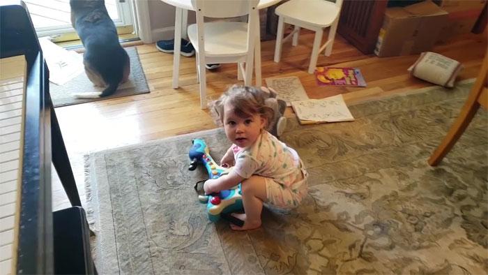 baby dancing dog playing piano 9 5d9adfe4312e6 700