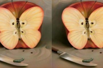 apple illusion