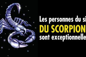 scorpionsont exceptionnelles 1 1 1200x667 1