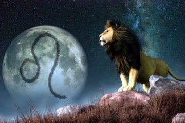 lionsymbol 1 579265345f9b58cdf300cca1