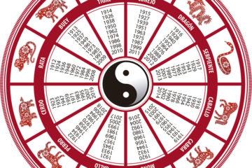 52 anyo nuevo chino cerdo 08