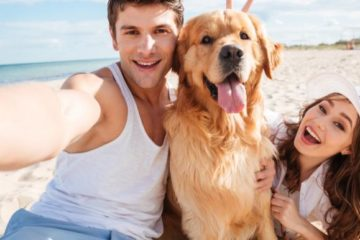 zodiac signs love pets more than people